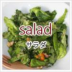 種類で選ぶサラダのレシピ